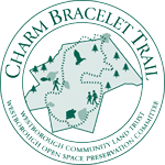 Charm Bracelet logo