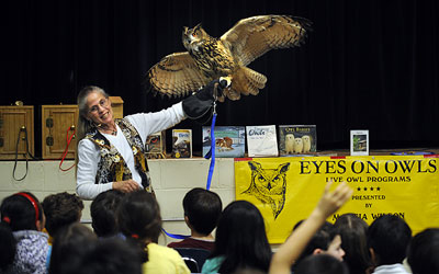 Marcia with Eurasian eagle owl