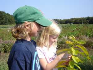 kids and milkweed caterpillar