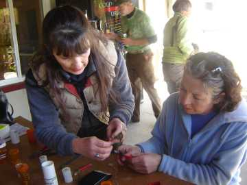bird banding workshop